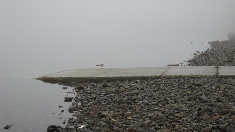 Téli Duna-part