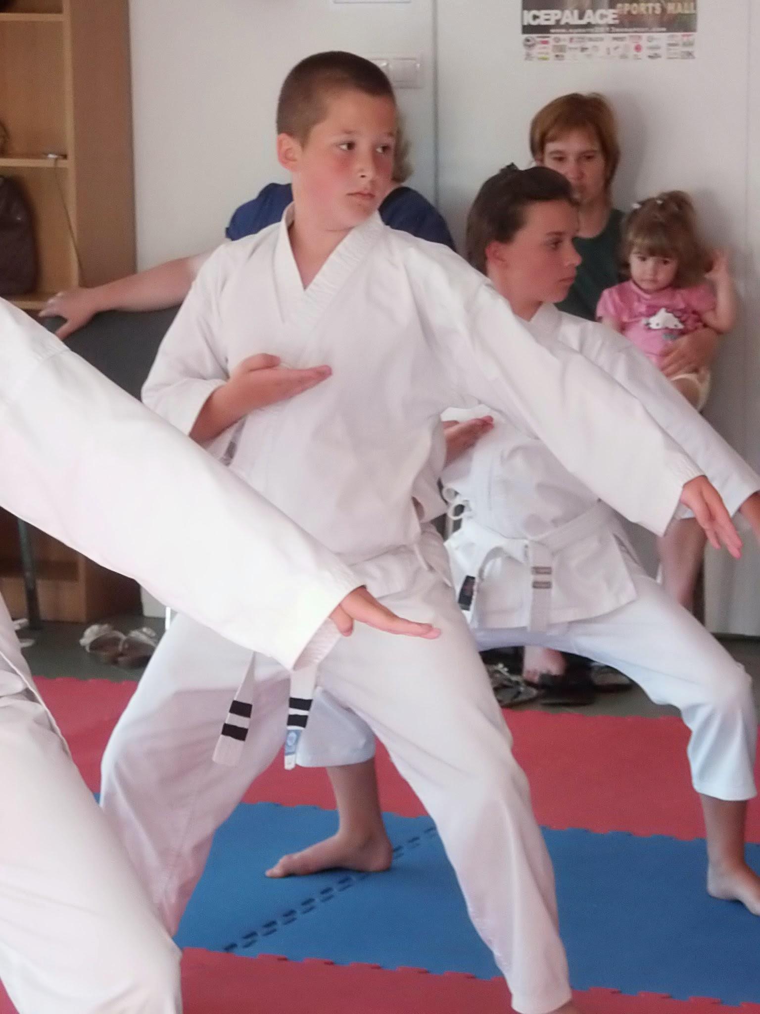 A kismarosi karatecsoport övvizsgája 2014. június 13-án a sárga öv megszerzéséért. - Fotó: Lucza Gergely