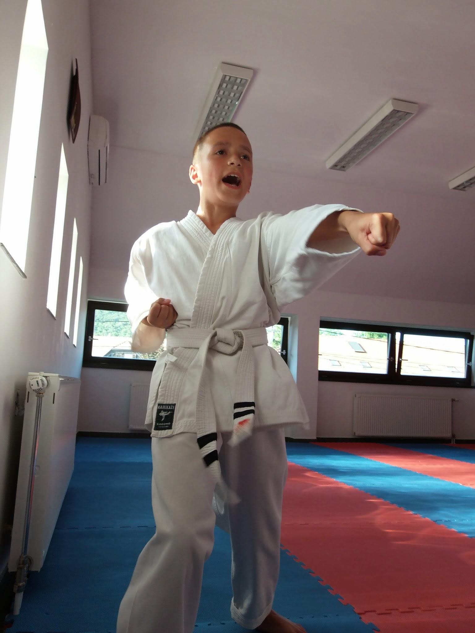 Madarász Viktor a kismarosi karatecsoport övvizsgáján 2014. június 13-án, melyen a sárga öv megszerzése volt a cél. - Fotó: Lucza Gergely