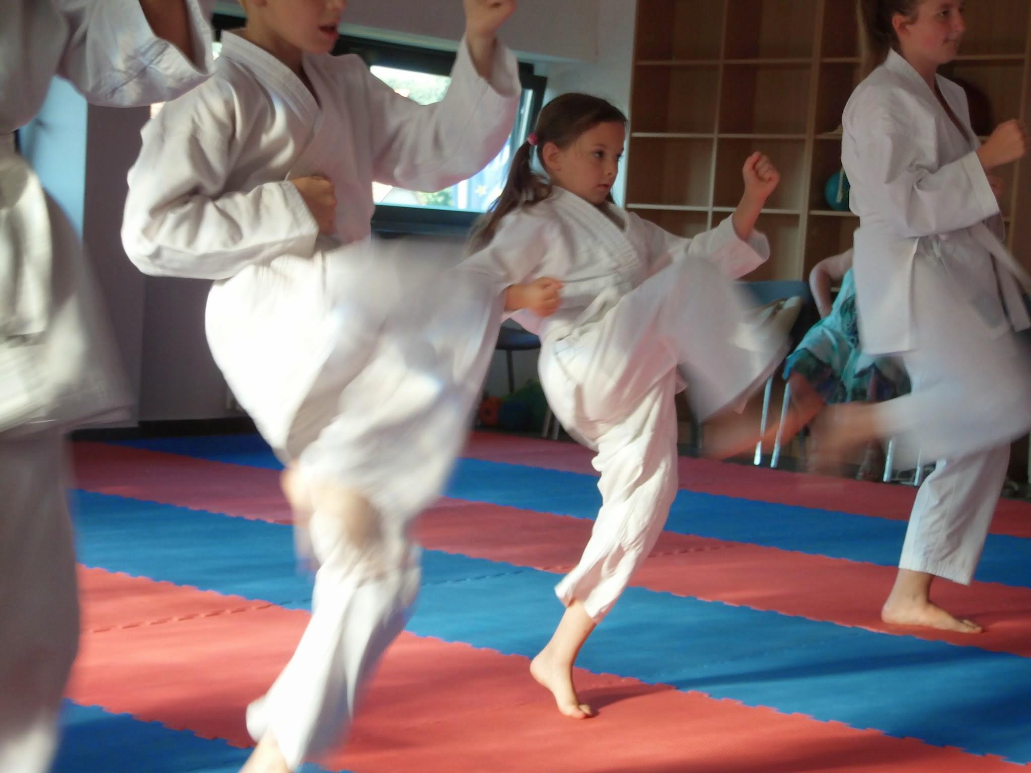 A kismarosi karatecsoport övvizsgája 2014. június 13-án a sárga öv megszerzéséért. - Fotók: Lucza Gergely