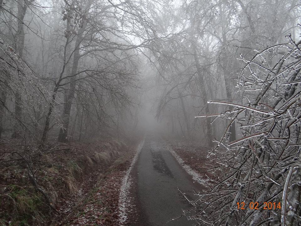 kemence-diósjenő úton