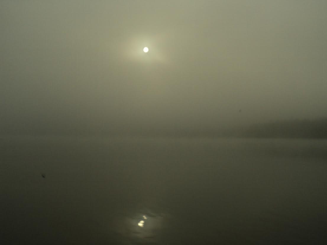 köd 4