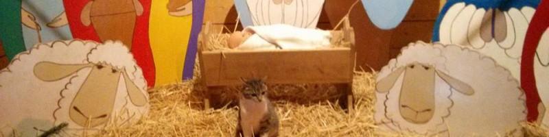 Vasárnap Szokolyán is kigyúlt az első adventi gyertya