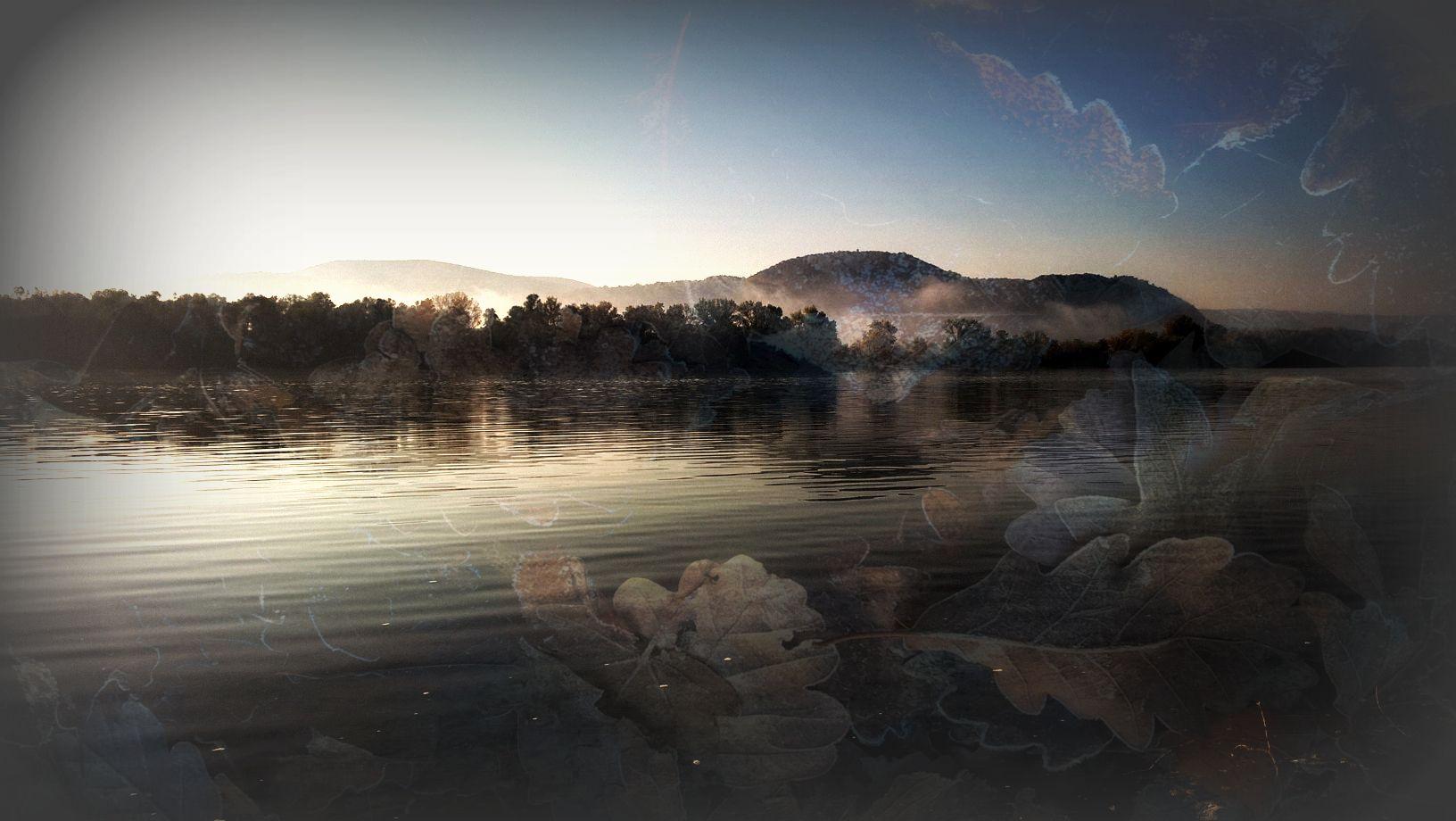 Falevél hegy víz