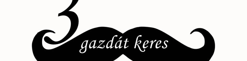 Vig Balázs is mókázik a megújult Kismarosi Könyvtár hivatalos megnyitóján