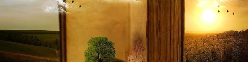Lukács Mária Örökzöld című kötetének bemutatója Verőcén