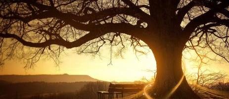Fényt hagyni magunk után…